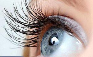 Hitta din lokala optiker
